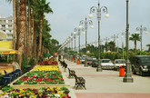 The coastal town of Larnaka with its famous Palm Trees (�Foinikoudes�) Promenade